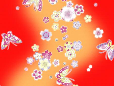 櫻花和蝴蝶