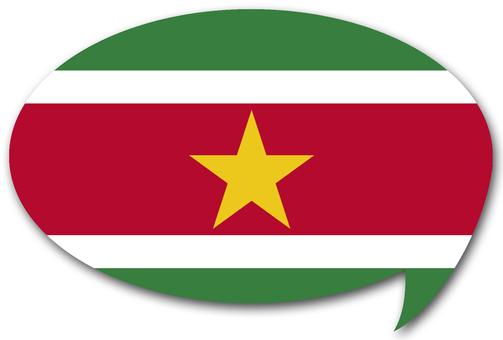 수리남 국기