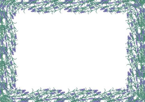 라벤더 프레임