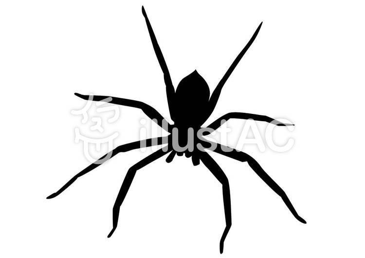 蜘蛛イラスト No 237177無料イラストならイラストac