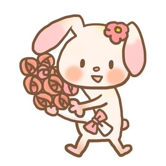 Rabbit bouquet color