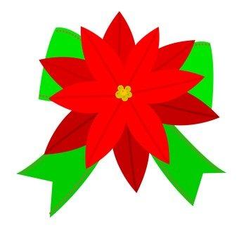 Poinsettia (2)