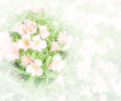 Flower message card 1-A