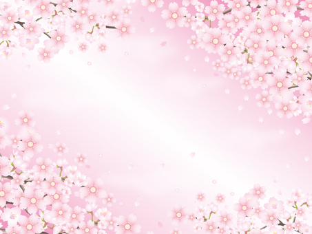 Cherry blossom petal background No. 2