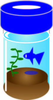 Illustration of a bottle aquarium