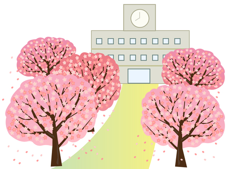 Cherry blossoms and schools