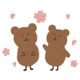 Sakura and Bear