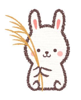 Susuki rabbit