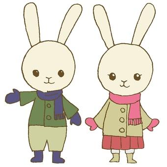 Winter clothes rabbit