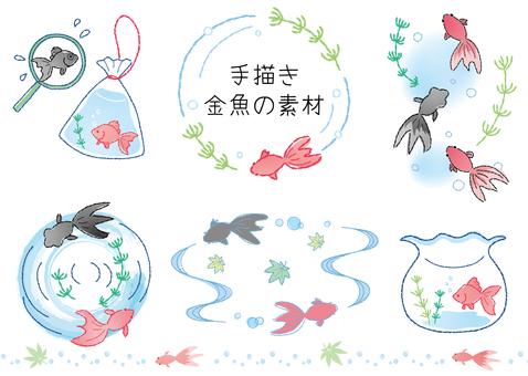 金魚セット01