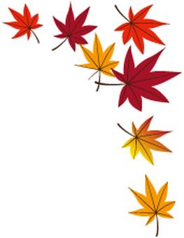 Fallen leaves 15