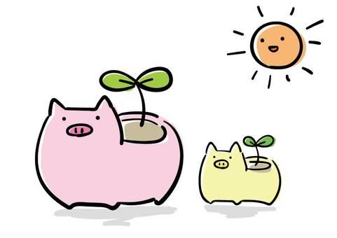 돼지 화분