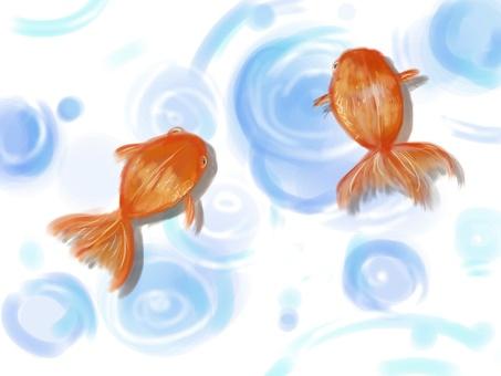 Goldfish watercolor wind