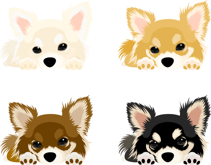 Chihuahua icon set 2