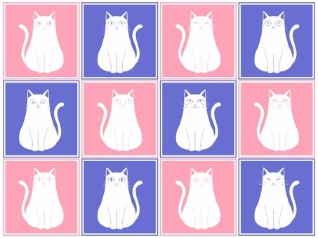 Cat pattern 1 blue pink