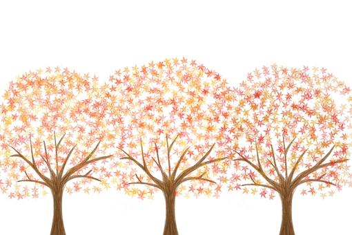 Autumn leaves tree 3