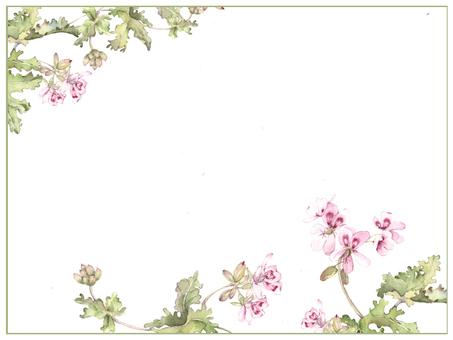 Letter background Kaori rich Zelaumeu