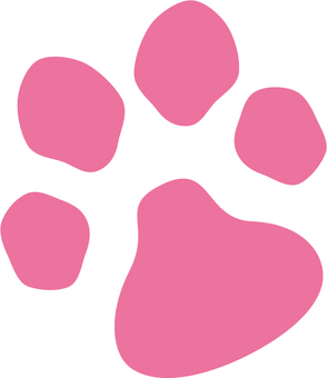 Cute foot of pink animal after