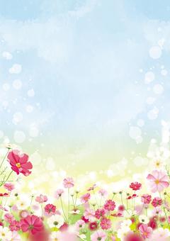 秋桜畑フレーム2 縦