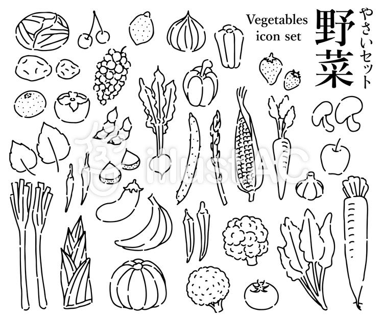 手書き野菜セット白黒イラスト No 1275262無料イラストなら