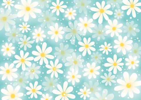 White flower pattern background 02
