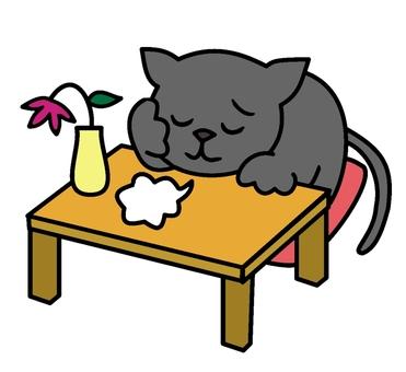 Wild cat cat