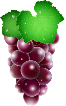 Grapes with leaves / drops