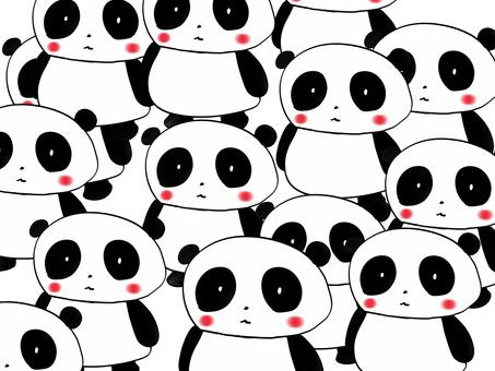 Panda solder Panda
