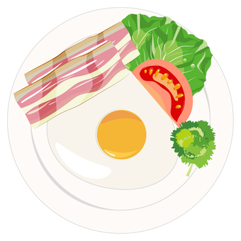 Breakfast Bacon egg illustration
