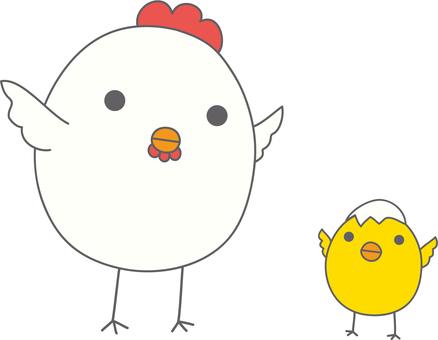 닭 친자 날개를 편다