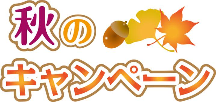 Fall campaign