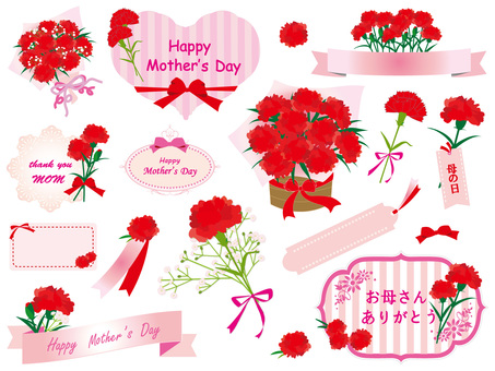 Mother's Day Carnation Set (v10)