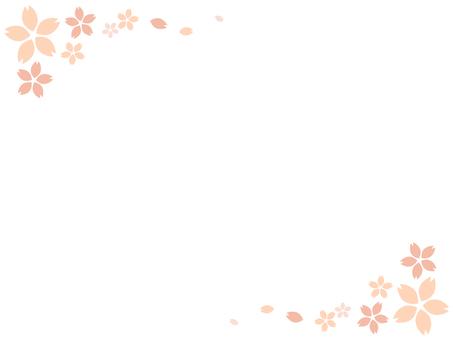 Cherry blossom background 3