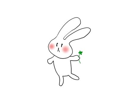 토끼와 행복