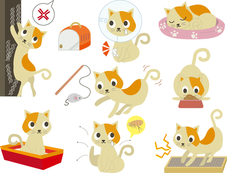 Pet 26 (Cat set 01)