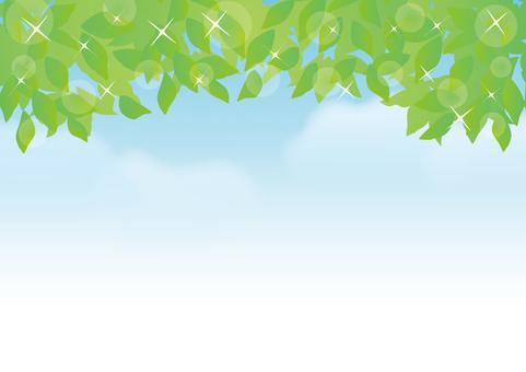 Fresh green on a blue sky