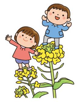 유채 꽃과 원 아들