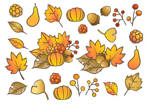 Fall Material 16