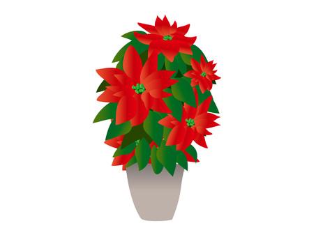 Christmas (2) Poinsettia large