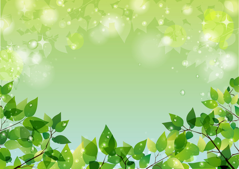 Glittery fresh green with water drops (footer)