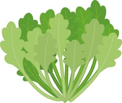 음식 시리즈 야채 쑥갓