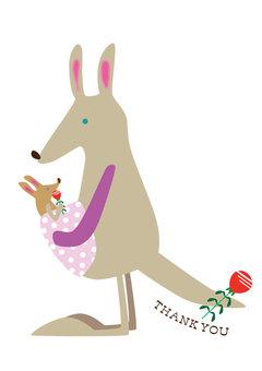 Kangaroo parent and child