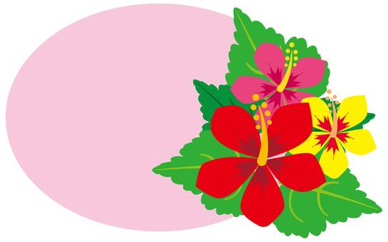 Flower - Hibiscus - 12