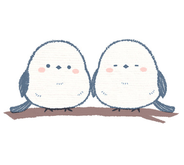 Shimanea couple