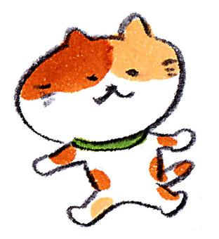 Walking cat