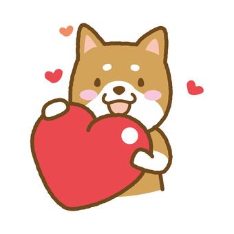 Shiba Inu Heart