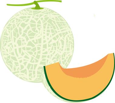 Food series fruit melon 3