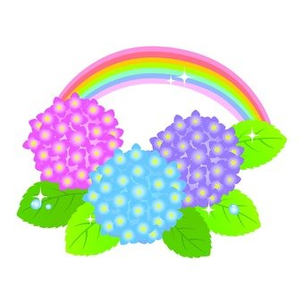 Hydrangea and rainbow