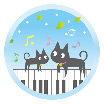 Cat music school