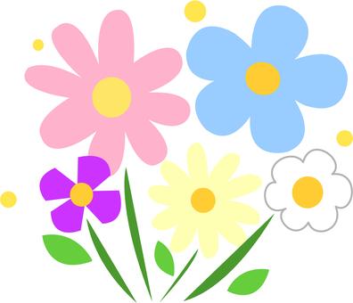 [식물] 꽃
